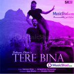 دانلود آهنگ شاد هندی دره بینا سلمان خان