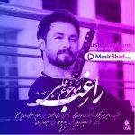 دانلود آهنگ عربی فارسی موجوع قلبی راغب